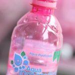 Botella PET 500ml y 1L
